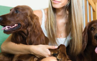 The Initial Consultation with Your Pet Sitter/Dog Walker – What to Expect